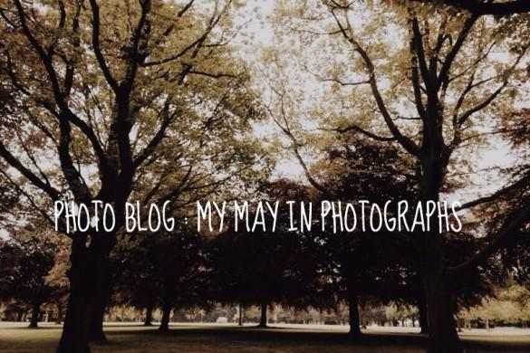 stylusboy-may-photographs-header.jpg