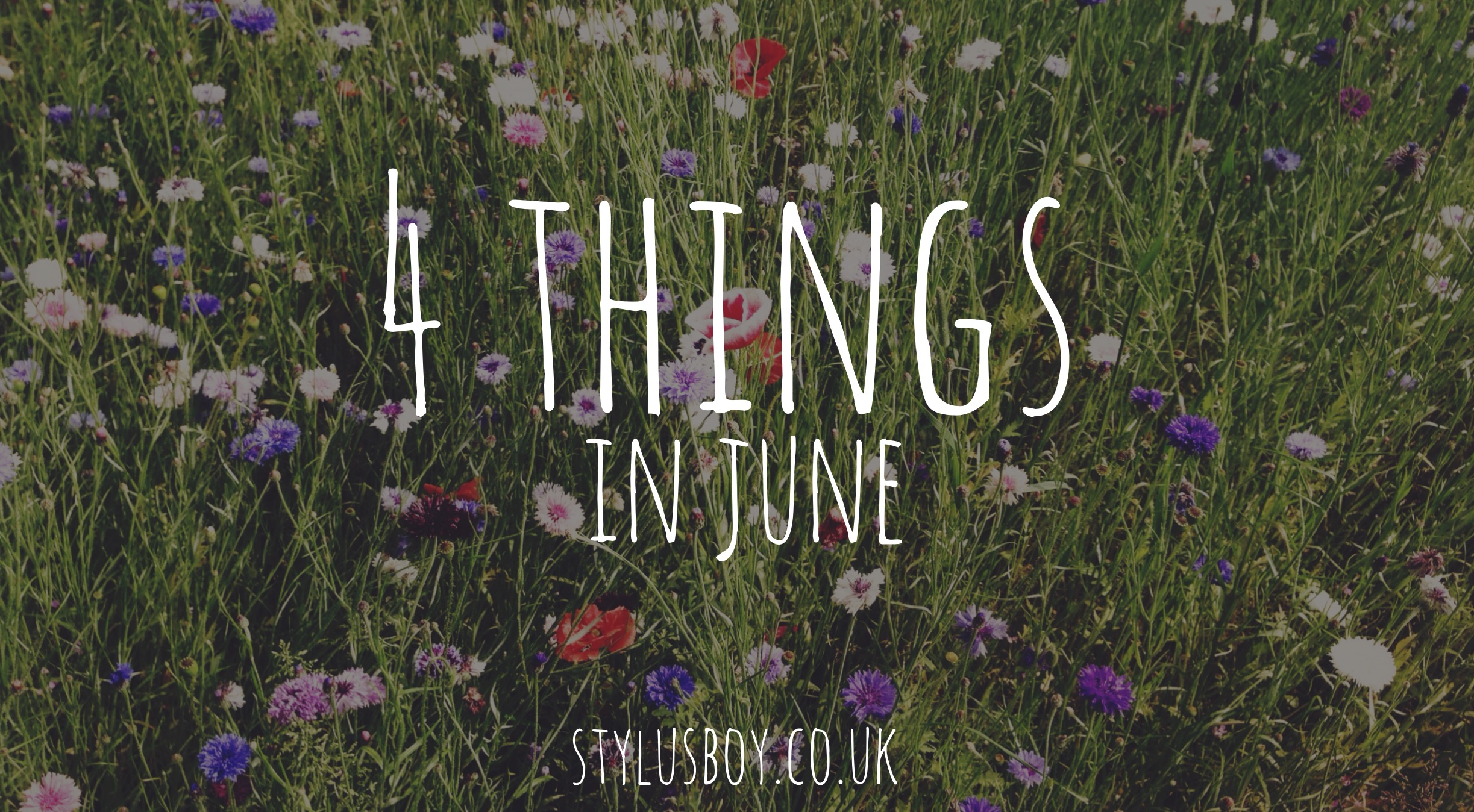 frou-things-june-stylusboy